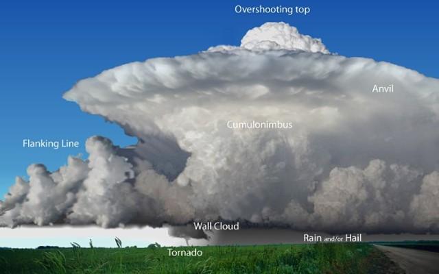 Esquema de la formación de un tornado en una tormenta supercelular. Fuente: Weather Spotter's Field Guide. National Weather Service (NWS).