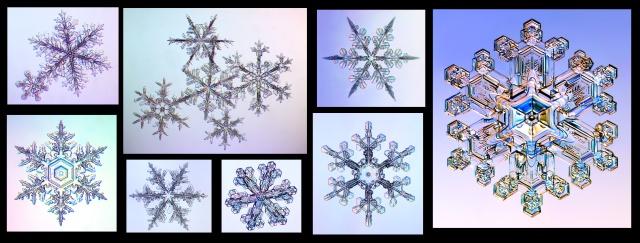 Copos de nieve con forma de estrella (Kenneth G. Libbrecht)