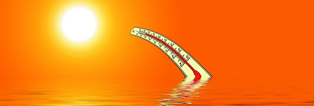 thermometer-501608_1280