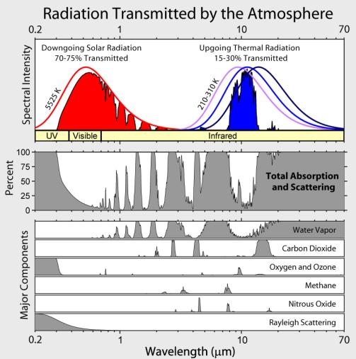 Fig 1 Espectros.png