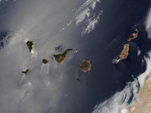 Fig_8_Canarias