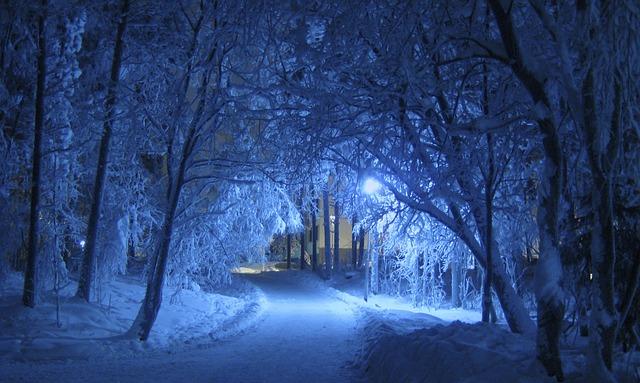 winter-69927_640